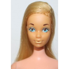TNT Barbie Euro / 610CSBB